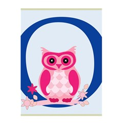 Alphabet Letter O With Owl Illustration Ideal For Teaching Kids 5 5  X 8 5  Notebooks by Nexatart