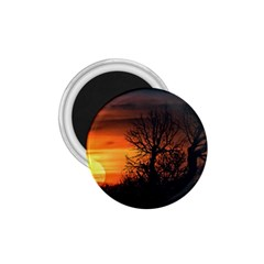 Sunset At Nature Landscape 1 75  Magnets by dflcprints