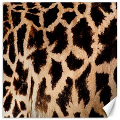 Giraffe Texture Yellow And Brown Spots On Giraffe Skin Canvas 16  X 16   by Nexatart