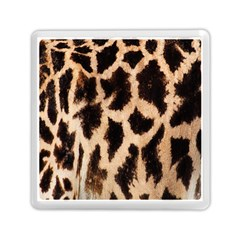 Giraffe Texture Yellow And Brown Spots On Giraffe Skin Memory Card Reader (square)  by Nexatart