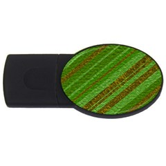 Stripes Course Texture Background USB Flash Drive Oval (2 GB) by Nexatart