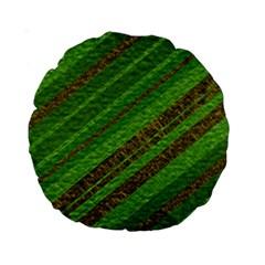 Stripes Course Texture Background Standard 15  Premium Round Cushions