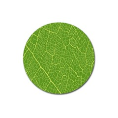 Green Leaf Line Magnet 3  (round) by Mariart
