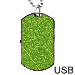 Green Leaf Line Dog Tag Usb Flash (two Sides) by Mariart