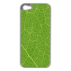 Green Leaf Line Apple Iphone 5 Case (silver) by Mariart