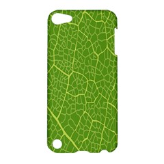 Green Leaf Line Apple Ipod Touch 5 Hardshell Case by Mariart