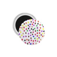 Paw Prints Dog Cat Color Rainbow Animals 1 75  Magnets by Mariart