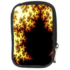 A Fractal Image Compact Camera Cases