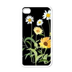 Flowers Of The Field Apple Iphone 4 Case (white) by Nexatart