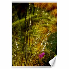 Dragonfly Dragonfly Wing Insect Canvas 24  X 36