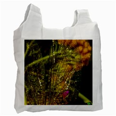 Dragonfly Dragonfly Wing Insect Recycle Bag (one Side) by Nexatart
