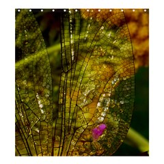 Dragonfly Dragonfly Wing Insect Shower Curtain 66  X 72  (large)
