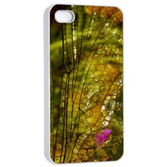 Dragonfly Dragonfly Wing Insect Apple Iphone 4/4s Seamless Case (white)