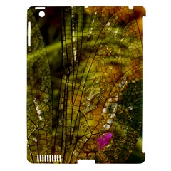 Dragonfly Dragonfly Wing Insect Apple Ipad 3/4 Hardshell Case (compatible With Smart Cover) by Nexatart