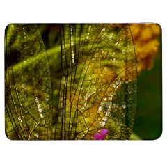 Dragonfly Dragonfly Wing Insect Samsung Galaxy Tab 7  P1000 Flip Case by Nexatart