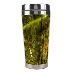 Dragonfly Dragonfly Wing Insect Stainless Steel Travel Tumblers by Nexatart