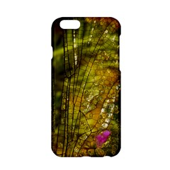 Dragonfly Dragonfly Wing Insect Apple Iphone 6/6s Hardshell Case by Nexatart