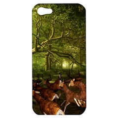 Red Deer Deer Roe Deer Antler Apple Iphone 5 Hardshell Case
