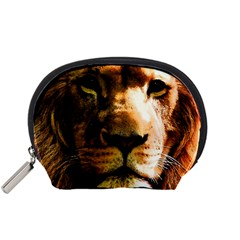 Lion  Accessory Pouches (small)  by Valentinaart