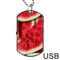 Fresh Watermelon Slices Texture Dog Tag USB Flash (Two Sides) by Gogogo