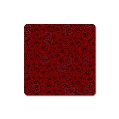 Red Roses Field Square Magnet by designworld65