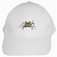 Dark Crab Photo White Cap by dflcprints