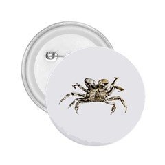 Dark Crab Photo 2 25  Buttons by dflcprints