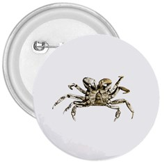 Dark Crab Photo 3  Buttons by dflcprints