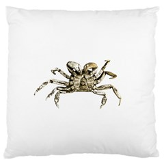 Dark Crab Photo Large Flano Cushion Case (two Sides) by dflcprints