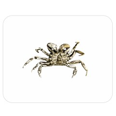 Dark Crab Photo Double Sided Flano Blanket (medium)  by dflcprints
