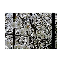 Blossom Apple Ipad Mini Flip Case by DeneWestUK