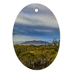 Patagonian Lanscape Scene, Santa Cruz, Argentina Oval Ornament (two Sides) by dflcprints