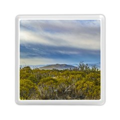 Patagonian Lanscape Scene, Santa Cruz, Argentina Memory Card Reader (square)  by dflcprints