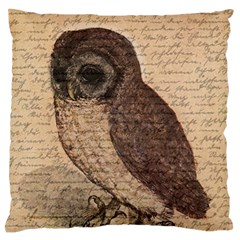 Vintage Owl Standard Flano Cushion Case (two Sides) by Valentinaart