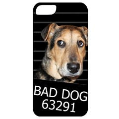 Bed Dog Apple Iphone 5 Classic Hardshell Case by Valentinaart
