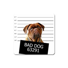 Bad Dog Square Magnet by Valentinaart