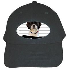 Bad Dog Black Cap by Valentinaart