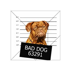 Bad Dog Acrylic Tangram Puzzle (4  X 4 ) by Valentinaart
