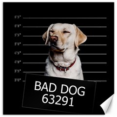 Bad Dog Canvas 16  X 16   by Valentinaart