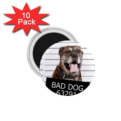 Bad Dog 1 75  Magnets (10 Pack)  by Valentinaart