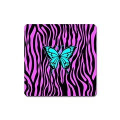 Zebra Stripes Black Pink   Butterfly Turquoise Square Magnet by EDDArt