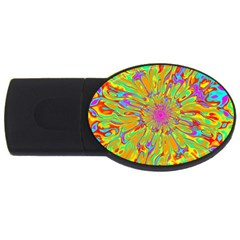 Magic Ripples Flower Power Mandala Neon Colored Usb Flash Drive Oval (4 Gb) by EDDArt