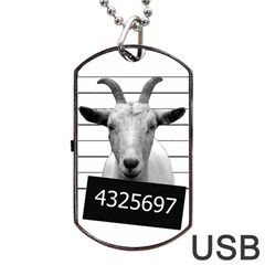 Criminal Goat  Dog Tag Usb Flash (two Sides) by Valentinaart