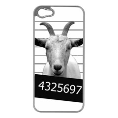Criminal Goat  Apple Iphone 5 Case (silver) by Valentinaart