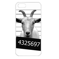 Criminal Goat  Apple Iphone 5 Seamless Case (white) by Valentinaart