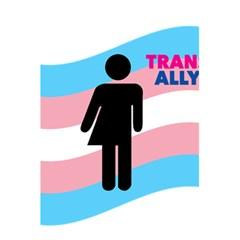 Transgender  5 5  X 8 5  Notebooks by Valentinaart