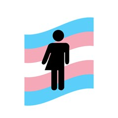 Transgender  Shower Curtain 48  X 72  (small)  by Valentinaart