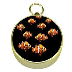 Clown Fish Gold Compasses by Valentinaart