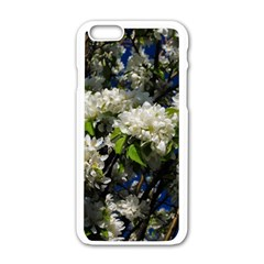 Floral Skies 2 Apple Iphone 6/6s White Enamel Case by dawnsiegler