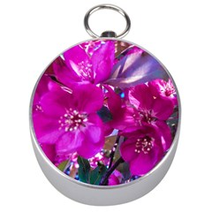 Pretty In Fuchsia Silver Compasses by dawnsiegler